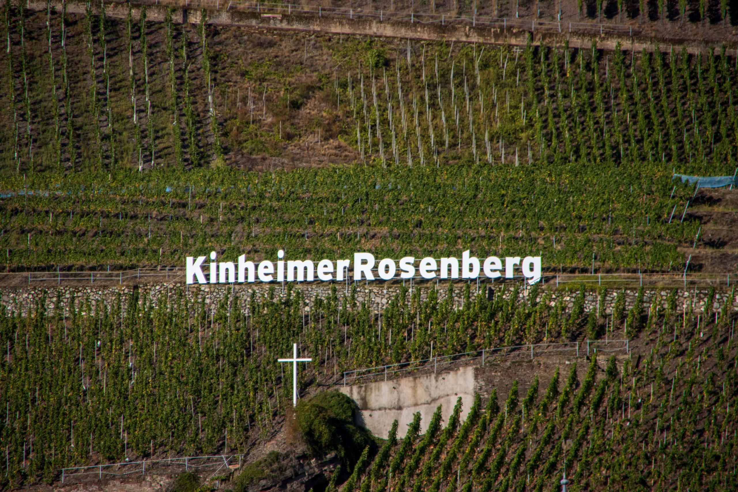 Zu Besuch beim Weingut Viermorgenhof in Kinheim-Kindel
